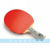 红双喜乒乓球拍3002