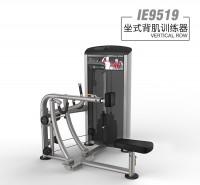 英派斯    IE9519坐式背肌训练器