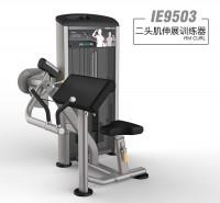 英派斯   IE9503二头肌伸展训练器