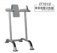 英派斯    IT7010 垂直提膝训练器