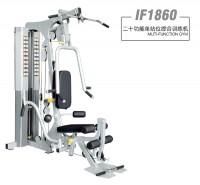 英派斯  IF1860   二十功能单站位综合训练机